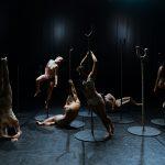 @TaniaCantor-Teatro Mayor