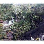 43 familias afectadas y 10 casas destruidas por movimiento de tierras en Caparrapí3