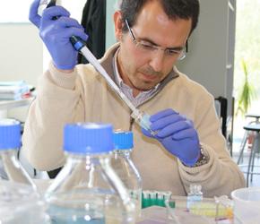 laboratorio-resistencia