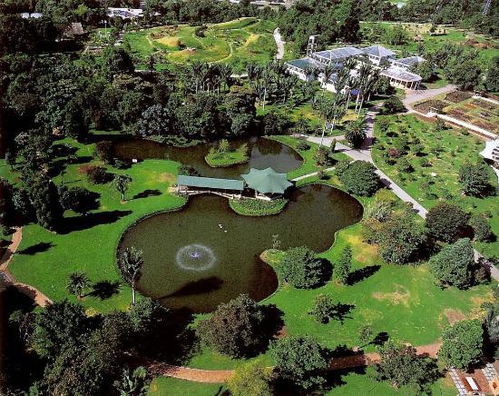 Jardín Botánico cumple 60 años conservando la flora de ...