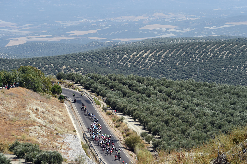 The peloton on stage six of the 2015 Tour of Spain