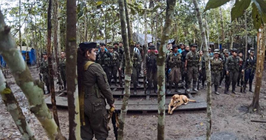 FARC-FOTO-CAMPAMENTO-