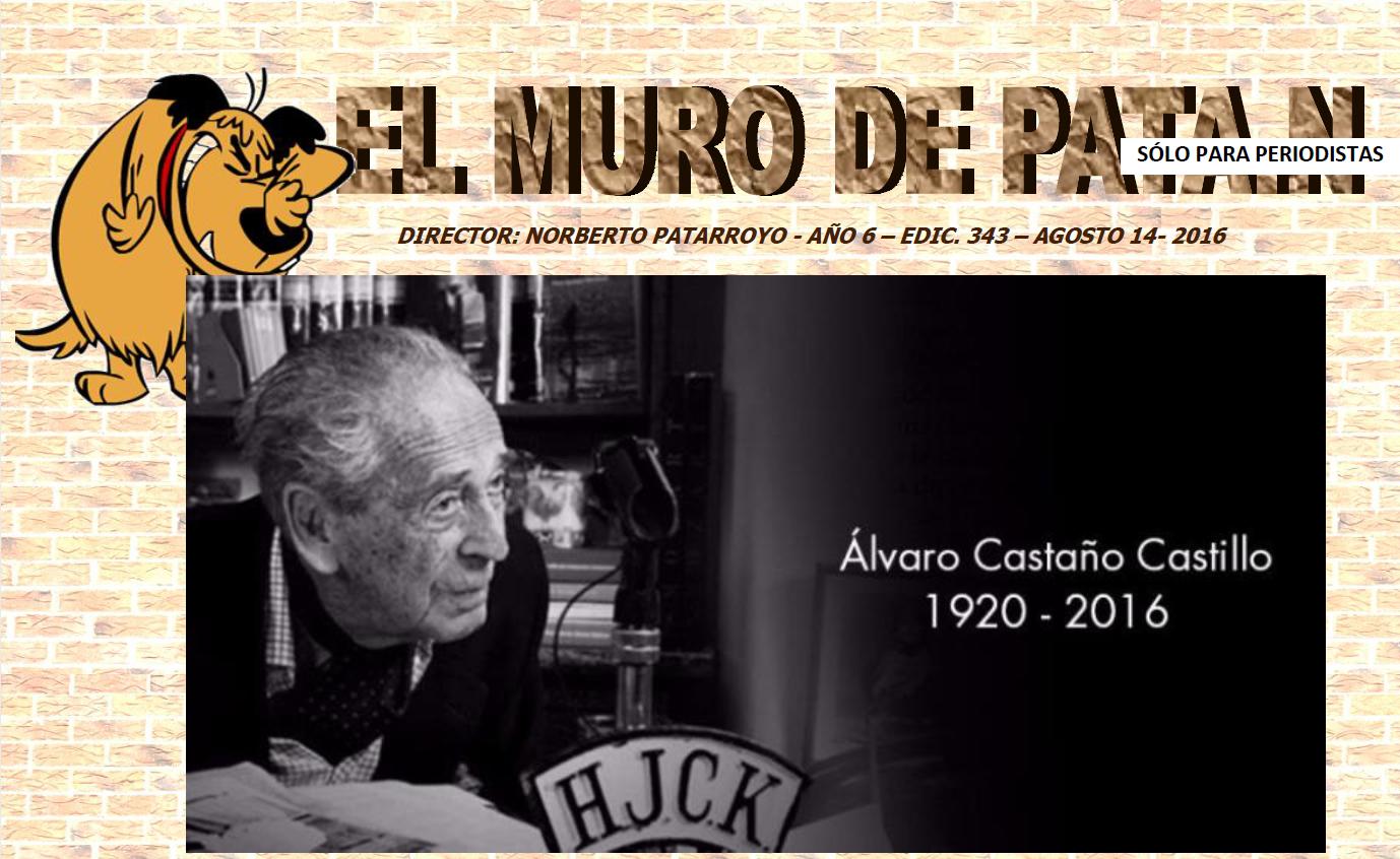EDICIÓN 343 EL MURO DE PATA.N
