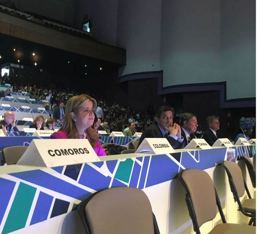 Ministra de Vivienda, Elsa Noguera, en la mesa de trabajo sobre cómo el desarrollo urbano no puede dejar a nadie atrás, Hábitat III. Foto: (MVCT).