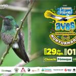 Festival de Aves 2019