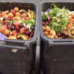 Desperdício_alimentos