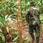 Asesinan a exmiembro de Farc en el Catatumbo