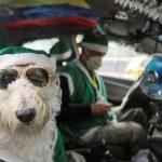 Nicolas Walteros en su taxi con su perro Coronel disfrazado de Papá Noel en Bogotá. REUTERS/Luisa Gonzalez