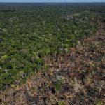 Una zona del Amazonas quemada en Labrea, Brasil Sep 2, 2021 .REUTERS/Bruno Kelly