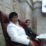 Representante a la Cámara, Guillermina Bravo Montaño