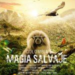 Poster_pelicula_AF-68.5x98.5_2
