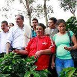 200 mil bultos de fertilizante gratis a cafeteros