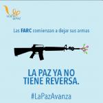 FARC comienzan a dejar las armas