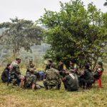Combatientesde las FARC