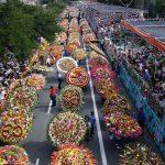 El Desfile de Silleteros 60 años en la memoria de Medellín (3)
