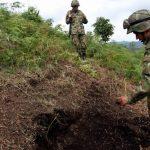 Seis de los siete asesinados en Argelia, Cauca