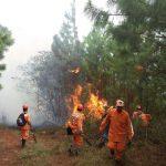 Incendios Forestales en Colombia