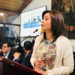 Concejal María Fernanda Roja