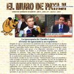 477- MURO DE PATA.N2019-04-16 15.01.53